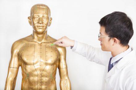 VTCT (ITEC) 人体解剖学专科文凭 (第三级)